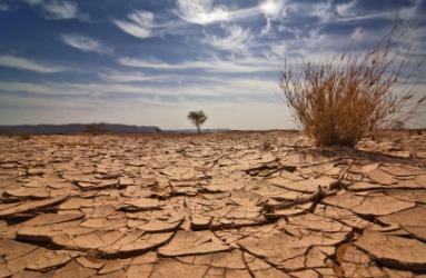 2953.desolate